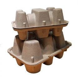 molded paper pulp wine shipper
